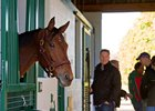 Beholder Arrives at Spendthrift Farm