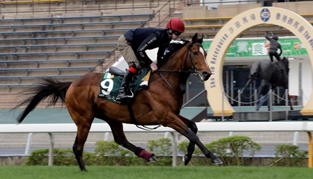Highland Reel - Hong Kong, December 7, 2016