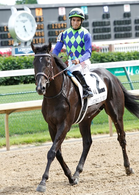 War Dancer wins the Grade III Louisville Handicap at Churchill Downs on May 24, 2014.