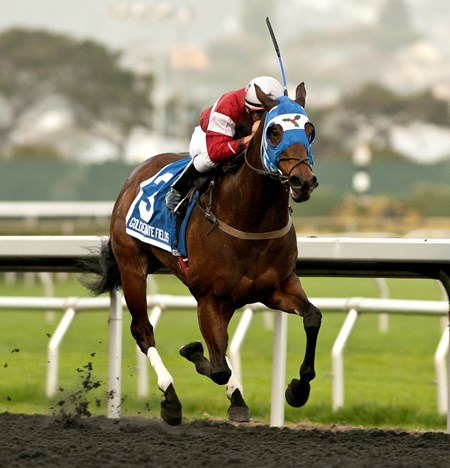 Fast and Foxy wins the 2016 Bear Fan at Golden Gate Fields