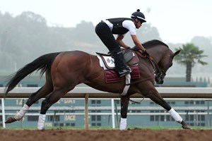 World Approval Kicks Clear In Fourstardave Bloodhorse