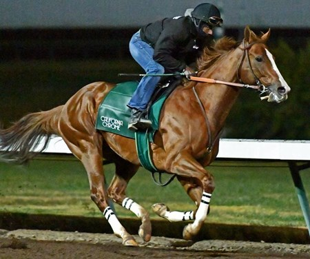 California Chrome - Los Alamitos, December 29, 2016