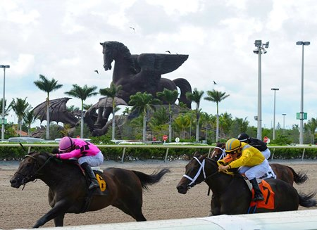The Pegasus statue at Gulfstream Park; the Pegasus World Cup Invitational Stakes (G1) added a chunk of purse money in the first quarter of 2017