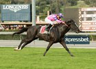 Bettys Bambino wins the San Simeon