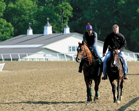 Animal Kingdom w/David Nava up is ponied by Graham Motion assistant David Rock at Fair Hill on May 12, 2011.