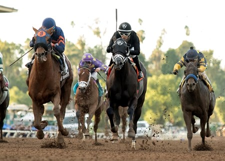 Mind Your Biscuits wins the 2016 Malibu Stakes (gr. I) at Santa Anita Park