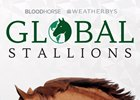 Global Stallions App Splash Screen