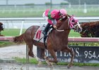 Dolphus Romps in Gulfstream Feature