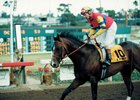 Futurity, Starlet Likely to Remain at Los Al