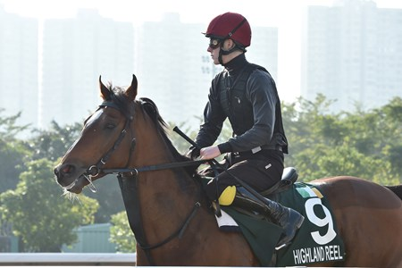 Highland Reel - Hong Kong, December 10, 2016