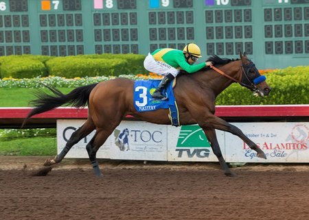 Mastery comes home strong in the Los Alamitos Cash Call Futurity