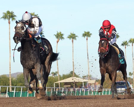 Rockin Home wins the 2016 Cactus Wren Stakes
