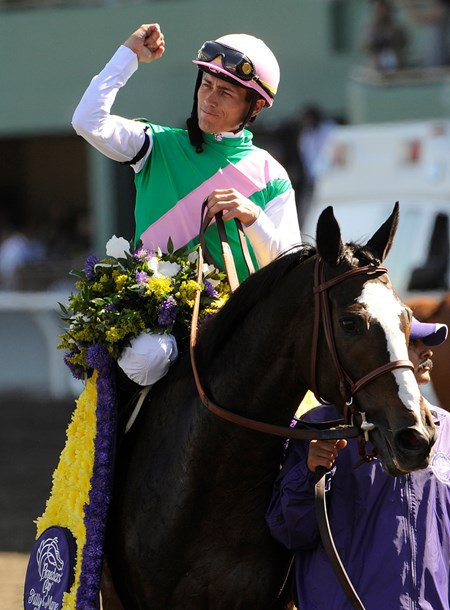 Ventura wins the 2008 Breeders' Cup Filly and Mare Sprint at Santa Anita Park