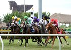 Pegasus World Cup Organizers Consider Adding Turf Race