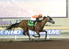 Cool Arrow Cruises to Springboard Mile Win