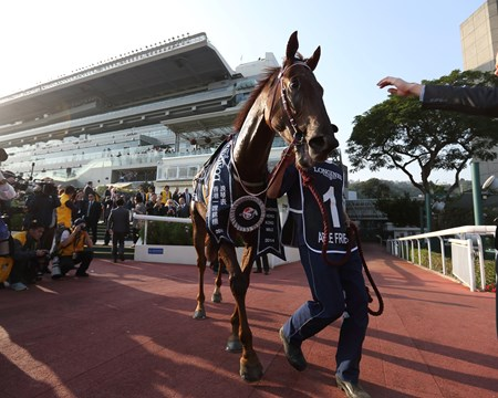 Able Friend (#1) with Joao Moreira in the saddle claims the 2014 LONGINES Hong Kong Mile (Group 1-1600M).