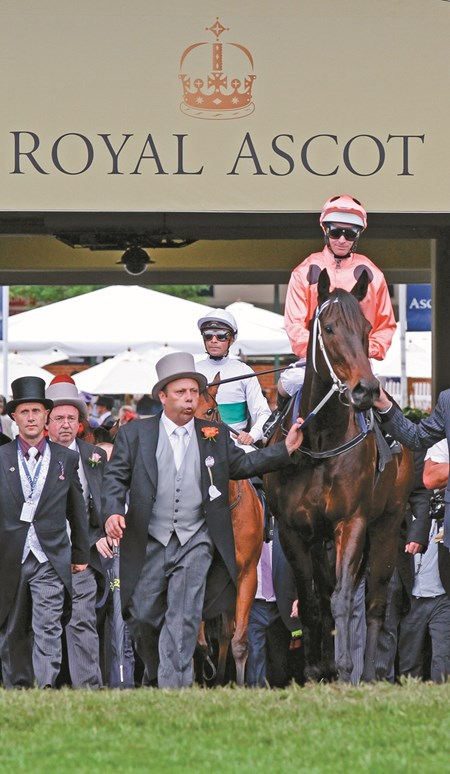 Black Caviar (salmon silks, black dots) goes 22 for 22 with her tight victory over Moonlight Cloud Royal Ascot's closing day Diamond Jubilee Stakes