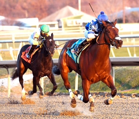 Greatbullsoffire wins the 2016 Maryland Juvenile Futurity