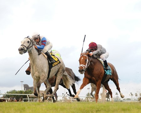 Neck of the Moon wins the 2016 South Beach Stakes