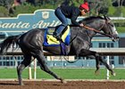 Arrogate Confirmed for San Pasqual After Bullet Work