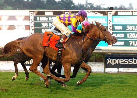 Decked Out wins the 2016 American Oaks