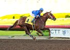 Resilient Humor wins her debut at Los Alamitos Race Course Dec. 8