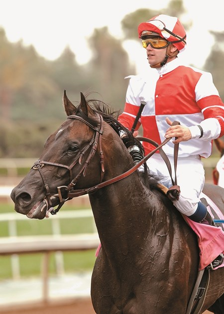 Bal a Bali and jockey Flavien Prat win the Grade III $100,000 American Stakes Saturday, May 9, 2015 at Santa Anita Park, Arcadia, CA.