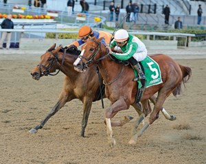 Highway Star wins the Go For Wand Handicap (gr. III) at Aqueduct.