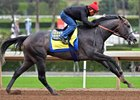Juddmonte Purchases Coolmore's Pegasus World Cup Slot