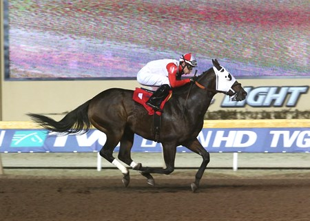 Half Dome Dude sets Remington Park track record for 4 1/2 furlongs Dec. 3.