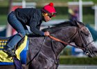 Arrogate tops list of North American earners for 2016