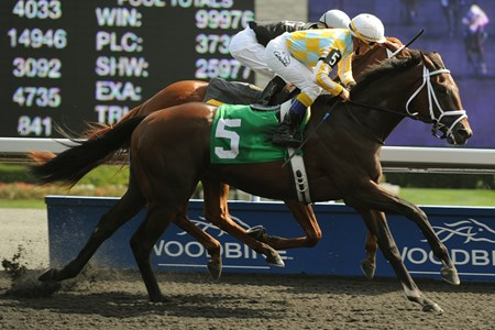 Toronto Ont. Sept 3 2012. Woodbine Racetrack. Jockey Luis Contreras (outside) guides Dynamic Sky to victory in the $200,000 dollar Simcoe Stakes. Dynamic Sky is owned by John Oxley of Kentucky and trained by local conditioner Mark Casse.