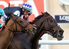 Miss Temple City Scores Matriarch by a Nose