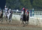 Perfect Wife defeated Torrent (far left) last December in Remington's Trapeze Stakes