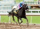 Grade 1 turf-winning Midnight Storm wins the Jan. 1 San Pasqual on Santa Anita's main track