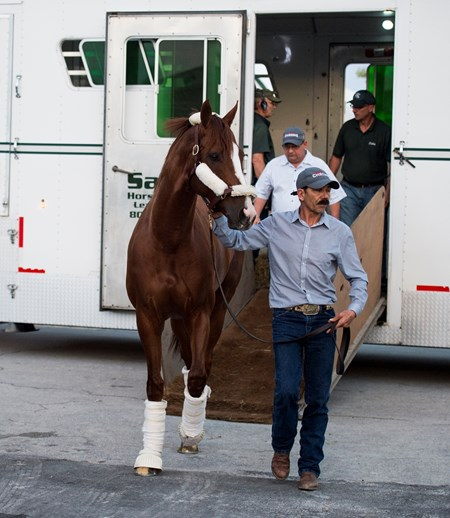 California Chrome getting off Van at Gulfstream Park  Jan 6 2017 with Alan Sherman in background