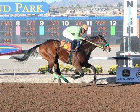 Conquest Mo Money wins the 2017 Riley Allison Stakes at Sunland Park