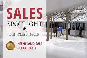 Sales Spotlight Keeneland January Recap Day 1