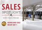 2017 Keeneland January Sale Recap Day 1