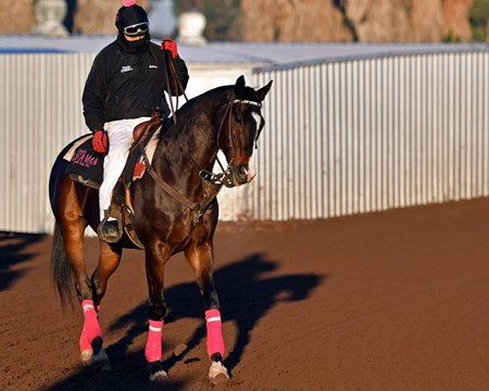 Lava Man - Los Alamitos - January 17, 2017
