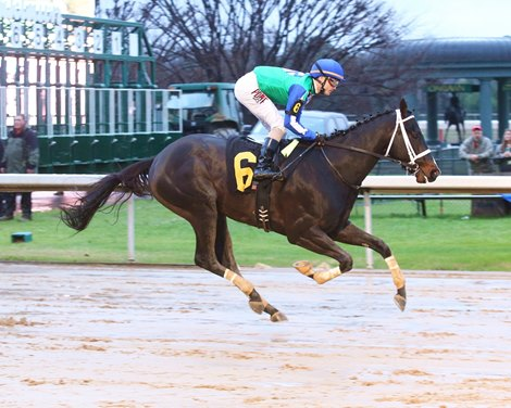Uncontested Romp In Smarty Jones Bloodhorse