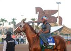California Chrome will look to end his career with a victory in the Pegasus World Cup (G1)
