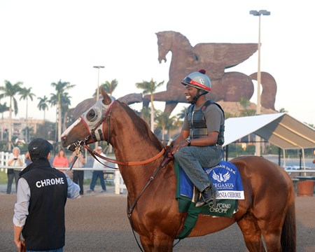 California Chrome - Gulfstream Park, January 21, 201