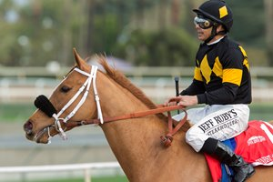 Jockey Mike Smith guides Finest City to the winner's circle after their victory in the Jan. 21 Santa Monica Stakes