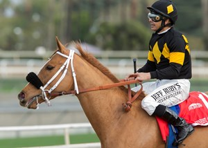 Jockey Mike Smith guides Finest City to the winner's circle after their victory in the Santa Monica Jan. 21