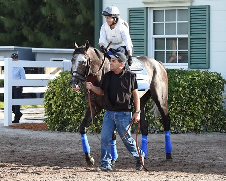 Arrogate - Gulfstream Park, January 26, 2017