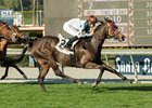 Prize Exhibit (GB) wins the 2017 Megahertz Stakes (G3T) at Santa Anita Park