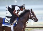 Neolithic Confirmed For Dubai World Cup Bid