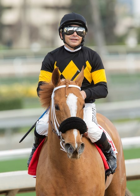 Jockey Mike Smith guides Finest City to the winner's circle after their victory in the Grade II, $200,000 Santa Monica Stakes, Saturday, January 21, 2017 at Santa Anita Park, Arcadia CA.