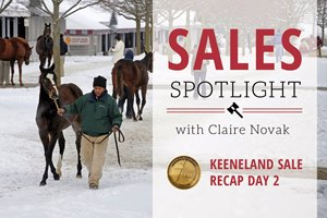 Sales Spotlight Keeneland January Recap Day 2